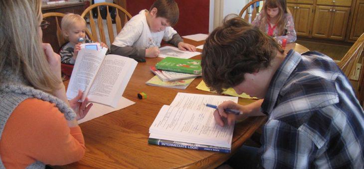 Děti jsou doma II : Vytěžme pozitiva homeschoolingu!